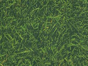 Пример зеленого ламината