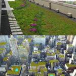 Нетрадиционные методы озеленения