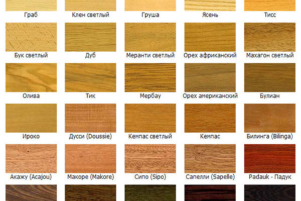 Какая бывает древесина